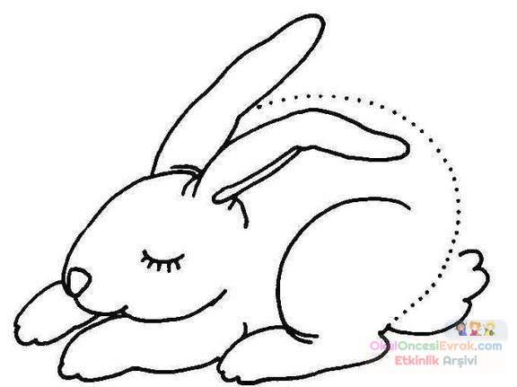Tavşan Hayvanlar Boyama 61 Preschool Activity