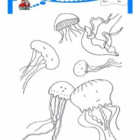 çocuklar Için Hayvan Hayvan Deniz Yaşamı Boyama Sayfası 7