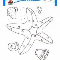 çocuklar Için Hayvan Hayvan Deniz Yıldızı Boyama Sayfası 15
