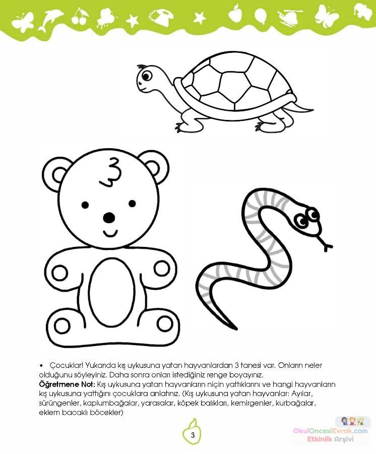 Okul öncesinde Kavramlar 29 Preschool Activity