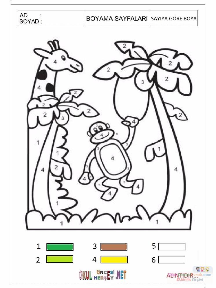 Sayıya Göre Boyama çalışmaları 3 Preschool Activity