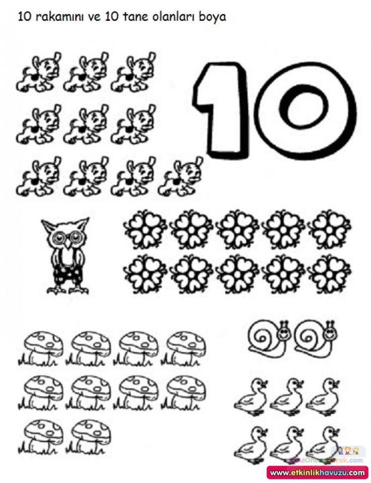 Okul Oncesinde Sayi Kavrami 86 Preschool Activity