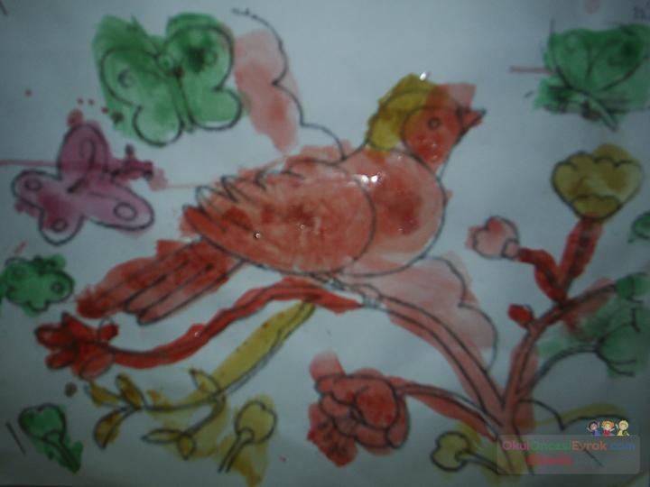 Sanat şeker Boyama Kuş1jpg Preschool Activity