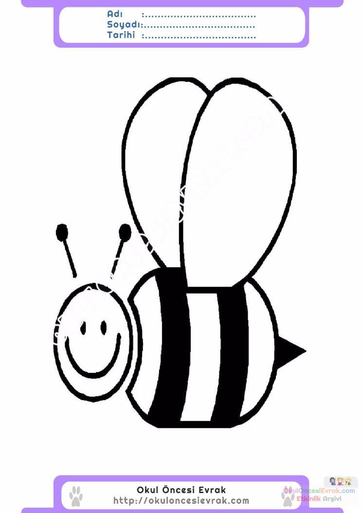 çocuklar Için Arı Hayvan Boyama Sayfası 20 Preschool Activity