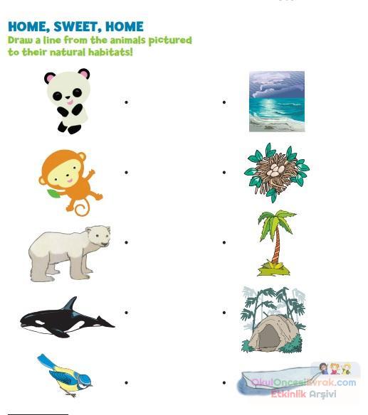 Animal habitat worksheets for grade 1