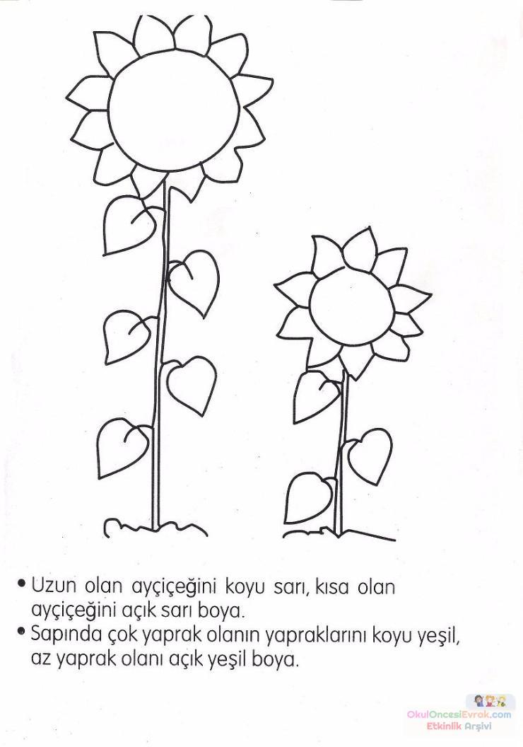 Sanat Etkinliği Ve Boyama Sayfası 304 Preschool Activity