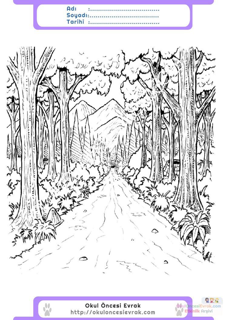 Orman Haftası Belirli Gün Ve Haftalar Boyama Sayfası 11 Preschool