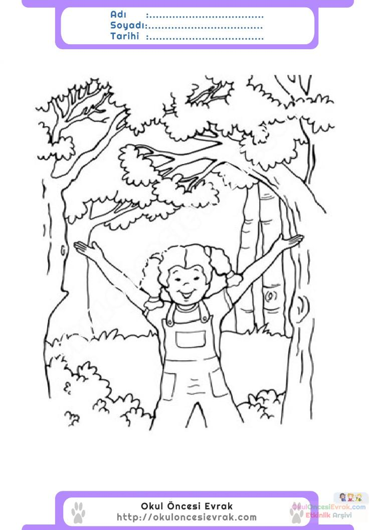 Orman Haftası Belirli Gün Ve Haftalar Boyama Sayfası 4 Preschool