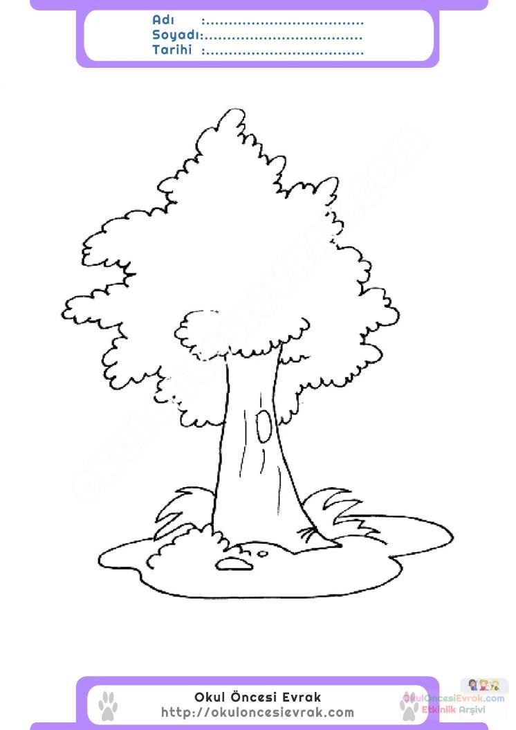 Orman Haftası Belirli Gün Ve Haftalar Boyama Sayfası 9