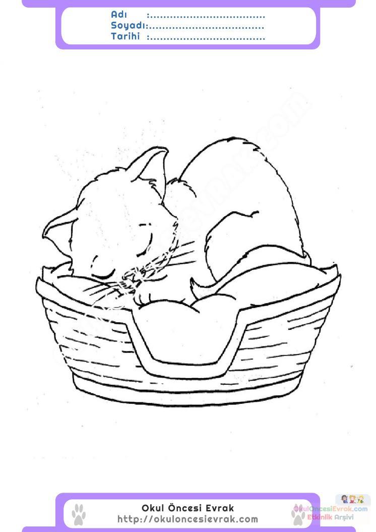Hayvanları Koruma Günü Belirli Gün Ve Haftalar Boyama Sayfası 6