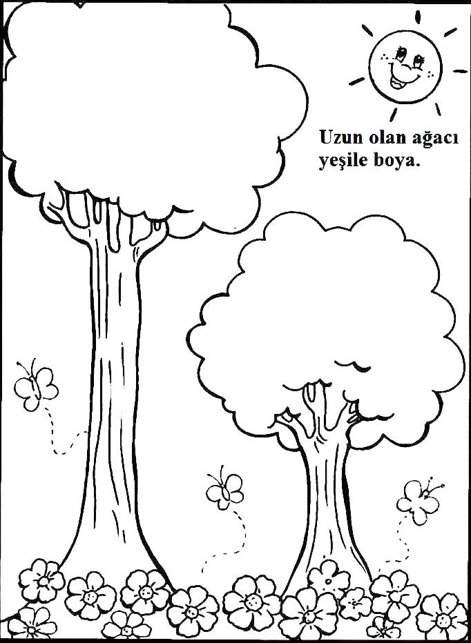 Uzun Kısa 6 Preschool Activity