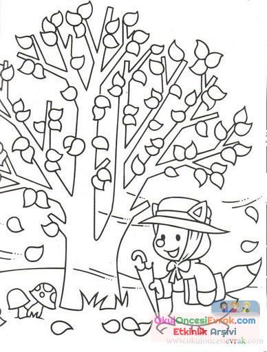 Ağaç Türleri (1)