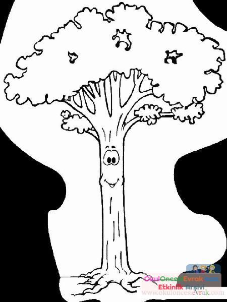 Ağaç Türleri (11)