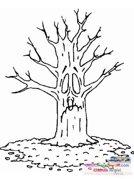 Ağaç Türleri (14)