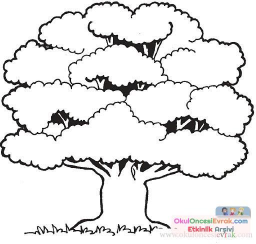 Ağaç Türleri (19)