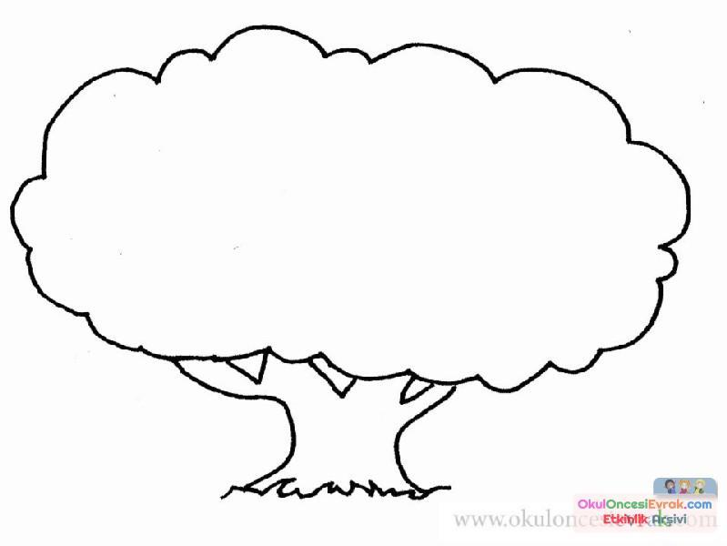 Ağaç Türleri (6)
