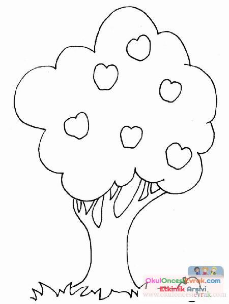 Ağaç Türleri (7)