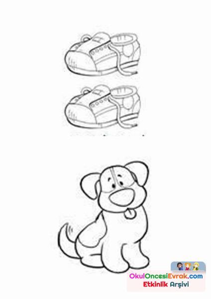 ayakkabı köpek