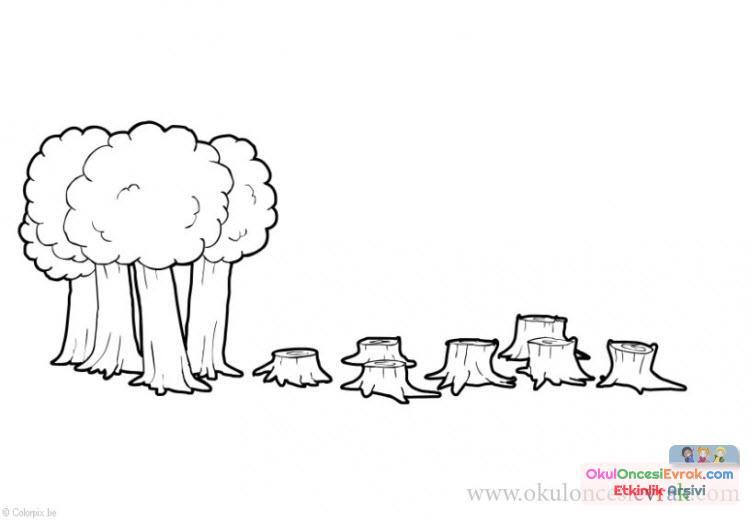 Çevre Kirliliği (3)