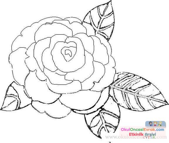 Çiçek Kalıpları (5)