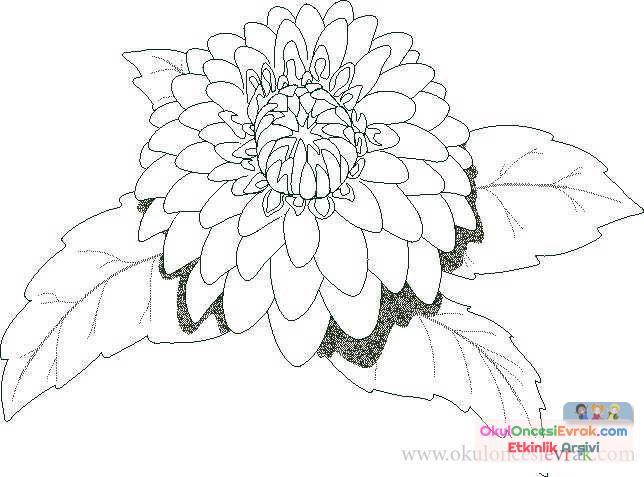 Çiçek Kalıpları (7)