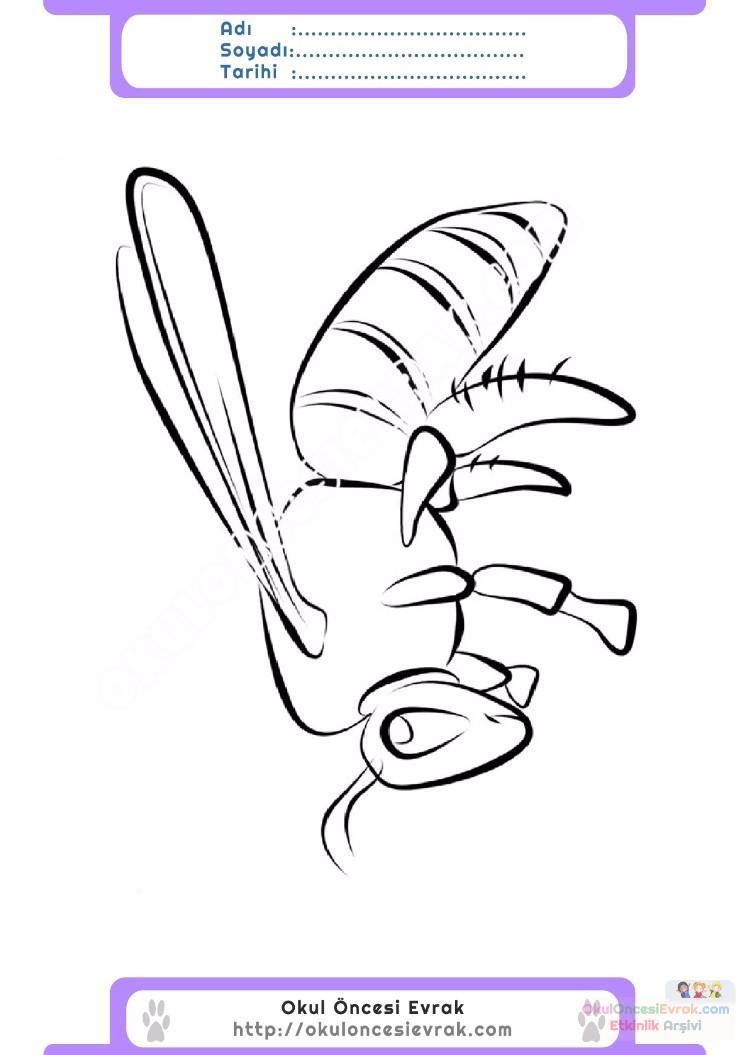 çocuklar Için Arı Hayvan Boyama Sayfası 10