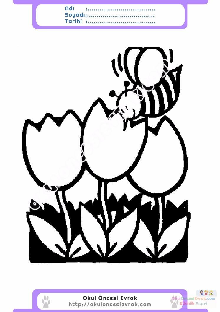 çocuklar Için Arı Hayvan Boyama Sayfası 28