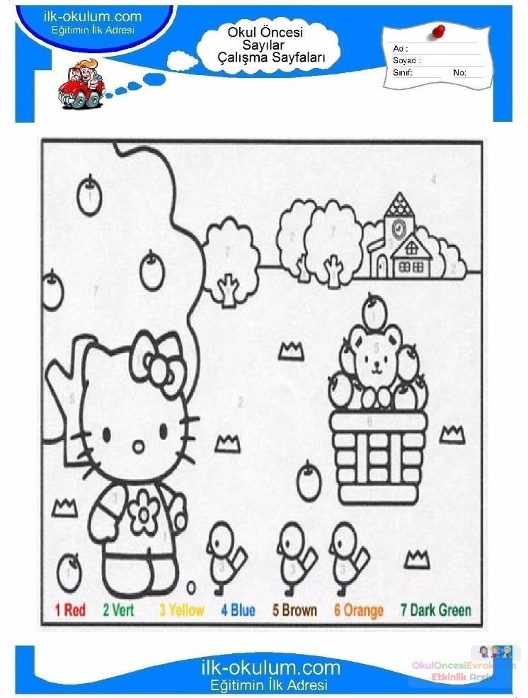 çocuklar-için-sayıya-göre-resmi-boya-boyama-sayfaları-58