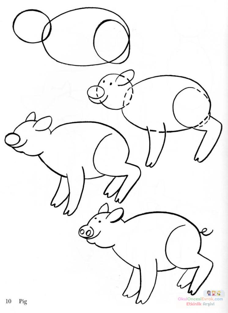 domuz  çalişması