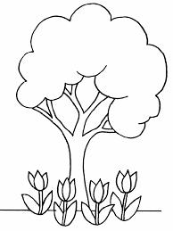 ilkbahar mevsimi (1)