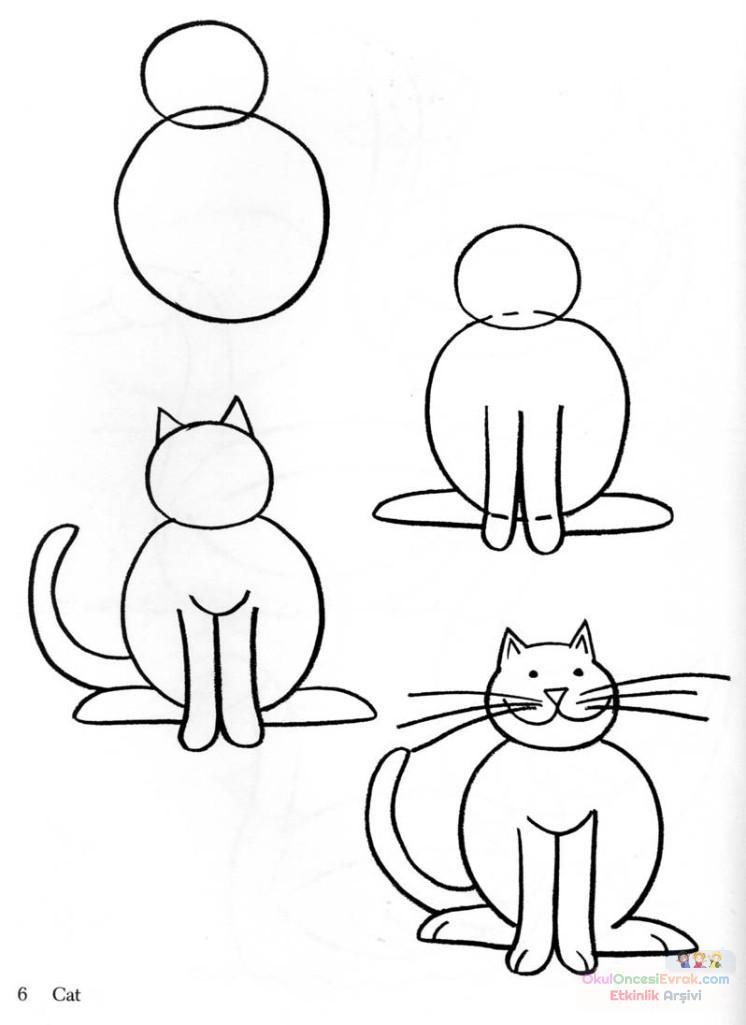 kedi  çalişması