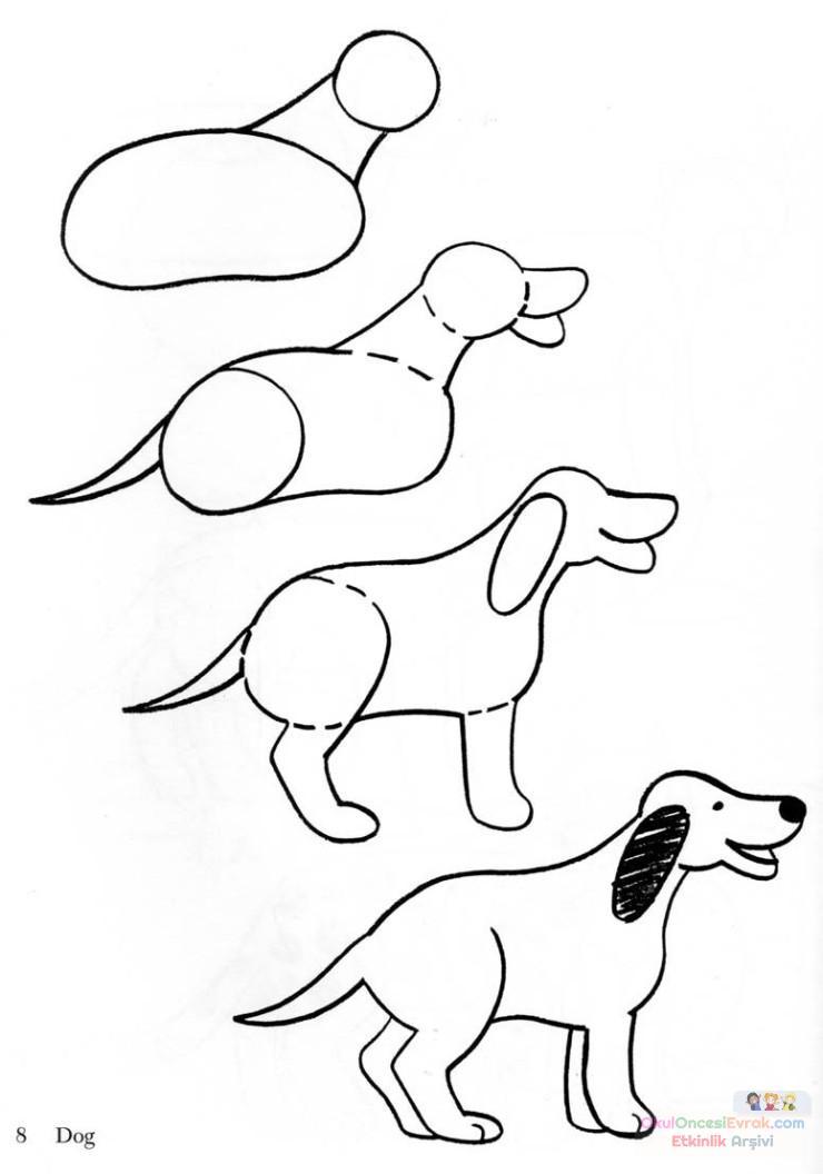 köpek  çalişması