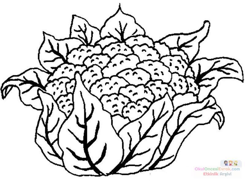 meyve sebze (74)
