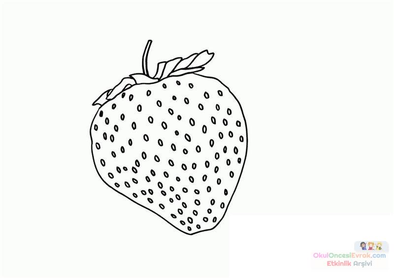 meyve sebze (80)