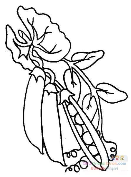 meyve sebze (94)