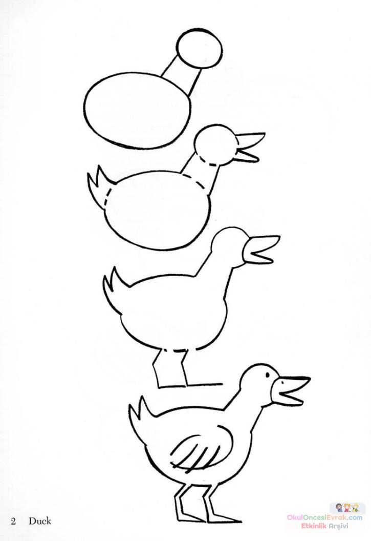 ördek  çalişması