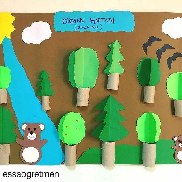 orman haftası (15)
