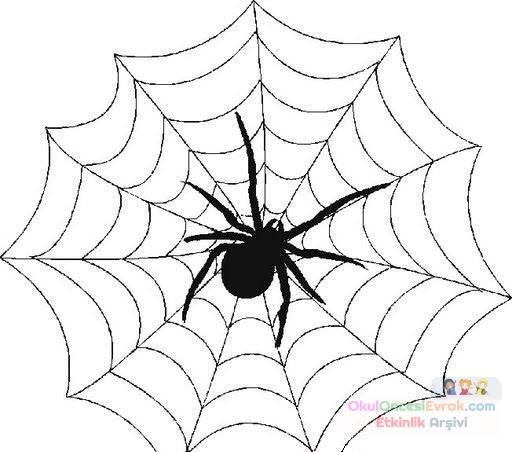 Örümcek Hayvanlar Boyama (633)