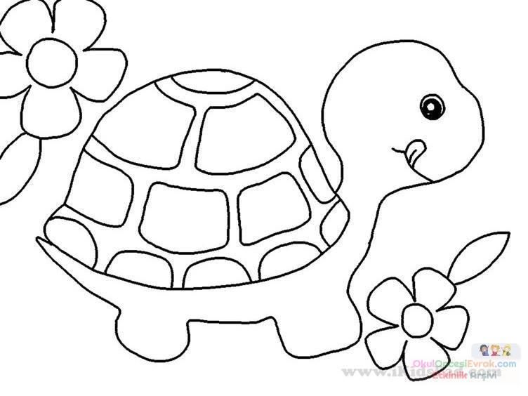 Черепашка раскраска для малышей