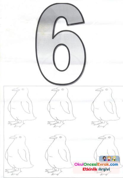 sayı kartı (5)