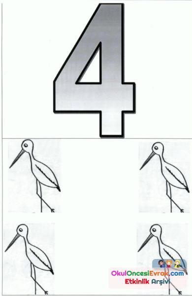 sayı kartı