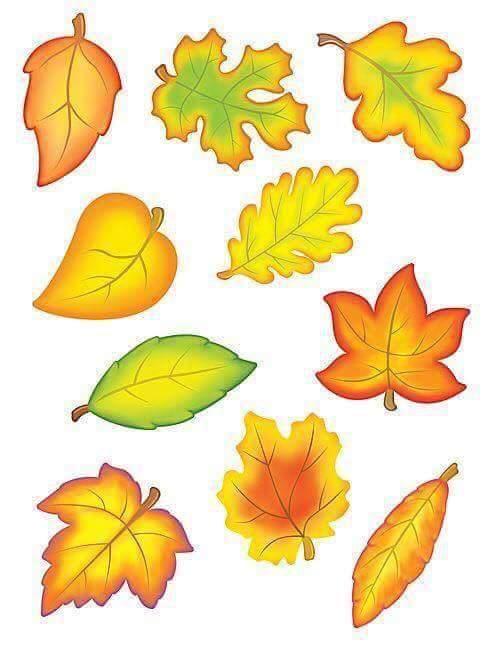 sonbahar ağacı (4)