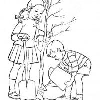 Orman Haftasi Belirli Gun Ve Haftalar Boyama Sayfasi 3 Preschool