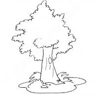 Orman Haftası Belirli Gün Ve Haftalar Boyama Sayfası 9 Preschool