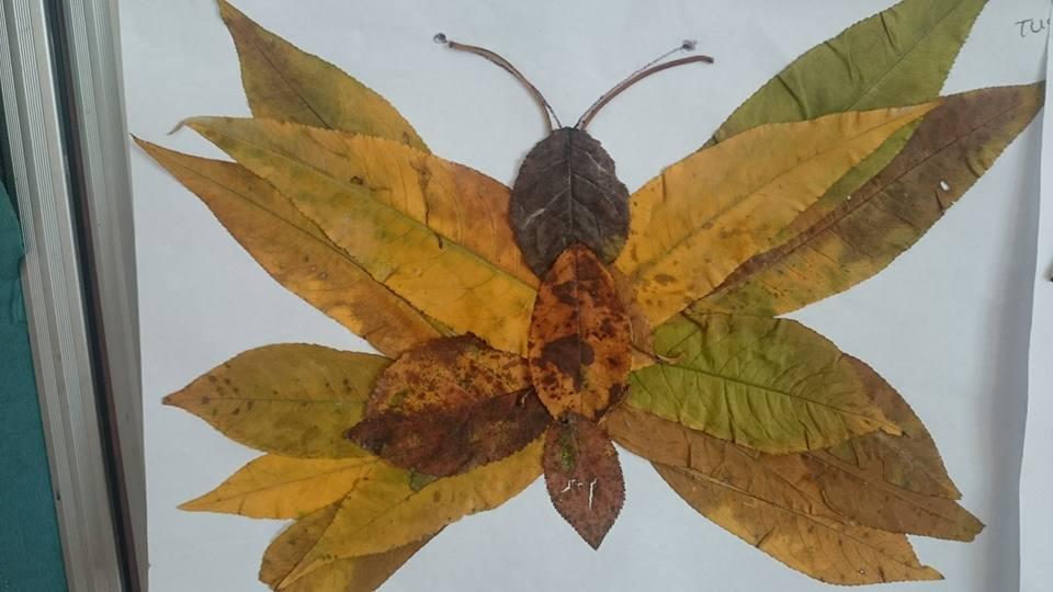 yapraklar ıle ılgılı sanat etkinliği (5)