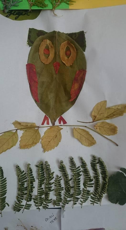 yapraklar ıle ılgılı sanat etkinliği (6)