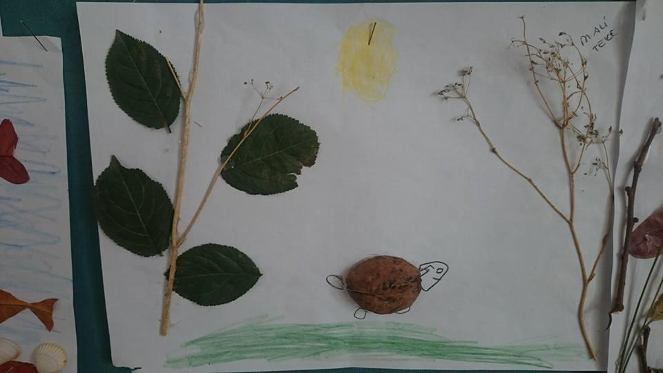 yapraklar ıle ılgılı sanat etkinliği (8)