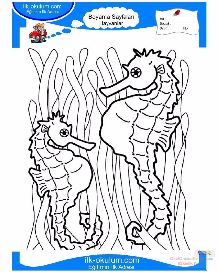 cute jellyfish and Seahorse coloring pages BIG   Pinterest